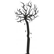 Drzewo 17