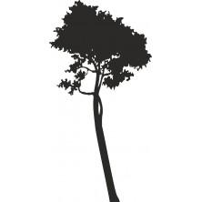 Drzewo 18