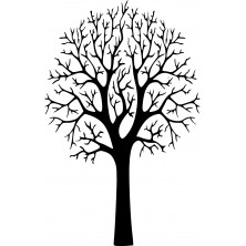 Drzewo 30