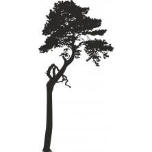 Drzewo 10
