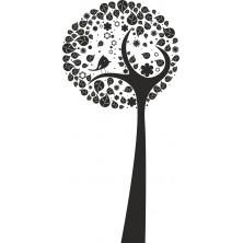 Drzewo 15